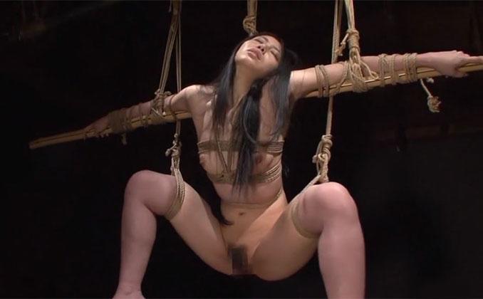 メスの牢獄 4 白井仁美